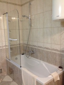Bath / shower combo.  The glass door swings outward to convert it into a normal bathtub.  Great water pressure!